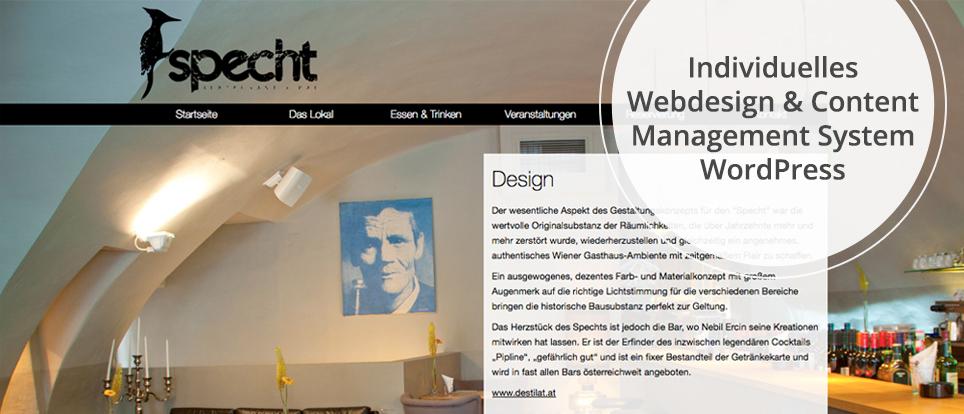 Webdesign & Grafik - Beispiel: Webdesign: Ihre neue Homepage mit Content Management System